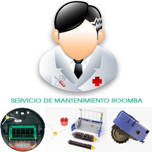 Servicio de Mantenimiento Basic